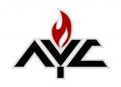 AYC_Color_Logo_preview.jpeg