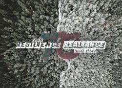 From Resilience to Realiance