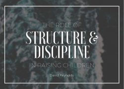 The Role of Structure & Discipline